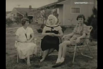White women fear Levittown