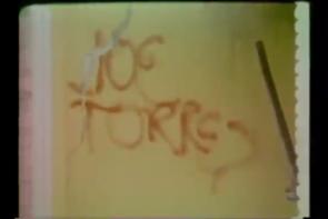 231 Joe Torres Moody Park Riot Houston